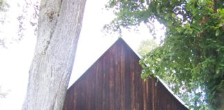 Czarna Górna Dostojny drewniany klasycyzm