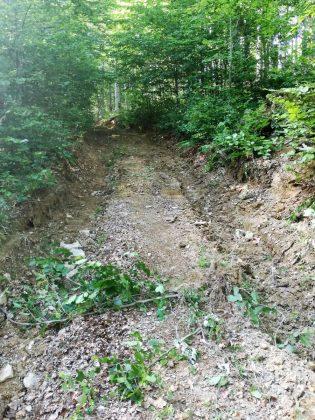 IMG 20170808 164557 2 315x420 - Właśnie trwa dewastacja lasu w sercu Bieszczad - Hyrlata