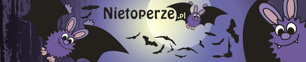 nietoperze.pl  - Korona Pogórzy i Podkowiec ma gust! Pogórze Bukowskie i Pogórze Leskie 09-10-11.03.2018 r