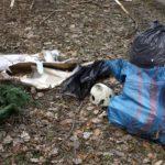 O śmieciach w najpiękniejszej spacerowej okolicy