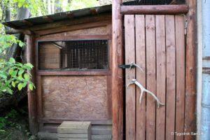 Fundacja Bieszczadziki 300x200 - Fundacja Bieszczadziki na rzecz Ośrodka Rehabilitacji Zwierząt w Bukowsku
