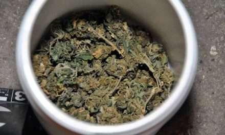 Odpowie za przestępstwa narkotykowe