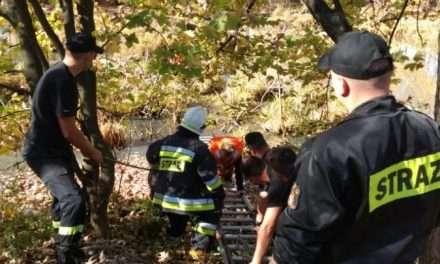 Mężczyzna poszukiwany przez policjantów ugrzązł w stawie