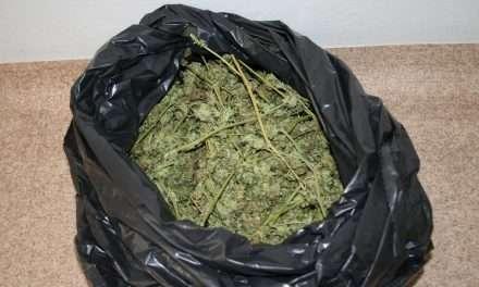 Policjanci zabezpieczyli ponad 7 kg narkotyków