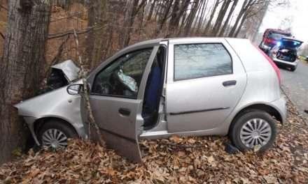 Fiat punto uderzył w drzewo