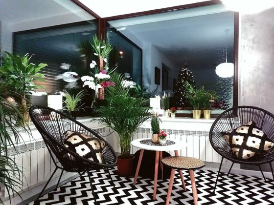 kwiaty w domu 4 560x420 - Zielone płuca domu