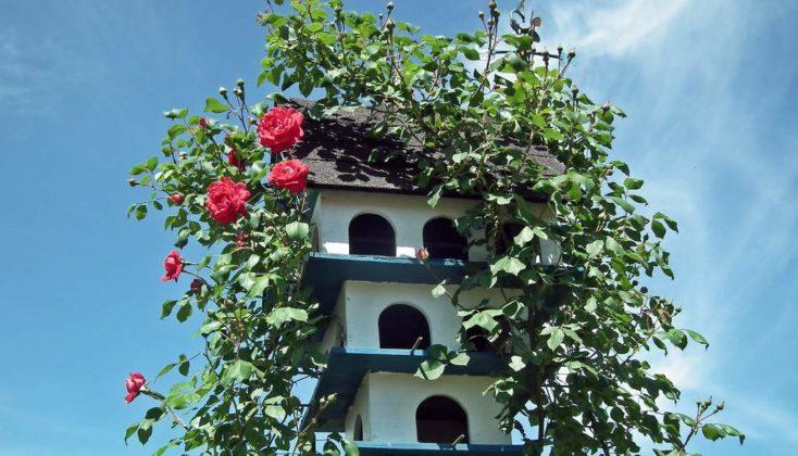 budki dla ptaków 3 734x420 - Kto w Sanoku zrobi budki lęgowe dla ptaków?