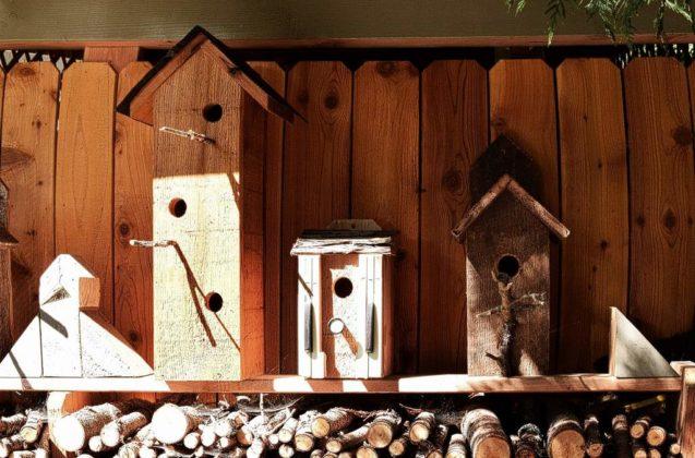 budki dla ptaków 4 637x420 - Kto w Sanoku zrobi budki lęgowe dla ptaków?