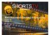 BWA Galeria Sanocka zaprasza na pokaz filmów kandydujących do tegorocznej nagrody Amerykańskiej Akademii Filmowej w kategorii krótki metraż