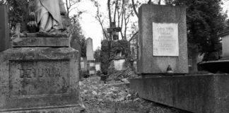 Walka o pamięć historyczną. Projekt odtworzenia nazwisk osób pochowanych na podmiejskich cmentarzach Lwowa