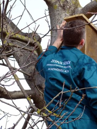Dla przyrody w Jędruszkowcach 4 315x420 - Dla przyrody w Jędruszkowcach