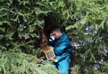 Dla przyrody w Jędruszkowcach