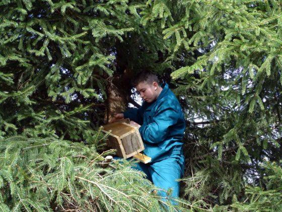 Dla przyrody w Jędruszkowcach 5 560x420 - Dla przyrody w Jędruszkowcach