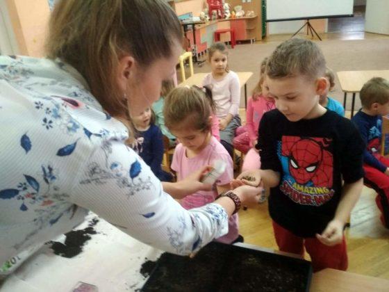 amelia piegdoń 2 560x420 - Wiosennie w przedszkolu na Wójtostwie