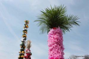 O wielkanocnej palmie słów kilka