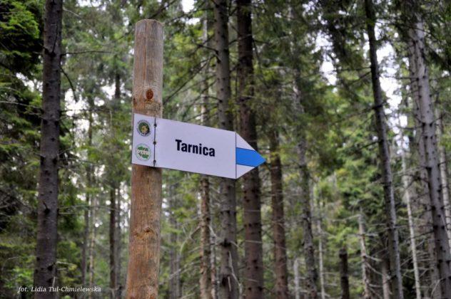 Tarnica 7 632x420 - Przejście graniczne pod Tarnicą będzie otwarte w majówkę