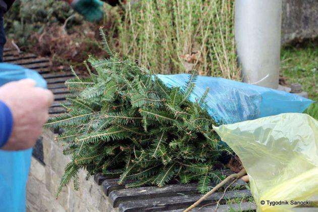 drzewko dla sanoczan 10 630x420 - Drzewko dla Sanoczan