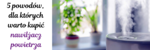 """5 powodów dla których warto kupić nawilżacz powietrza 300x100 - Jak korzystać z dofinansowania w ramach programu """"Czyste Powietrze""""?"""