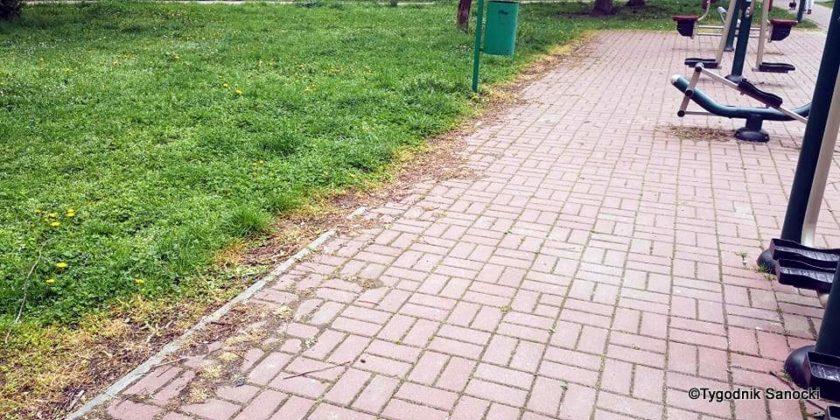Trawniki pod blokami wypalane Roundupem 11 840x420 - Trawniki pod blokami wypalane Roundupem?
