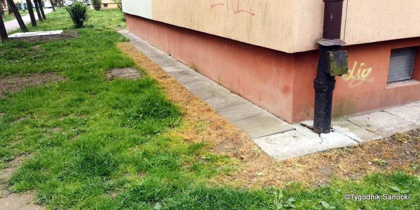 Trawniki pod blokami wypalane Roundupem 16 840x420 - Trawniki pod blokami wypalane Roundupem?