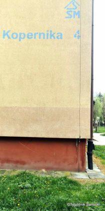 Trawniki pod blokami wypalane Roundupem 17 210x420 - Trawniki pod blokami wypalane Roundupem?