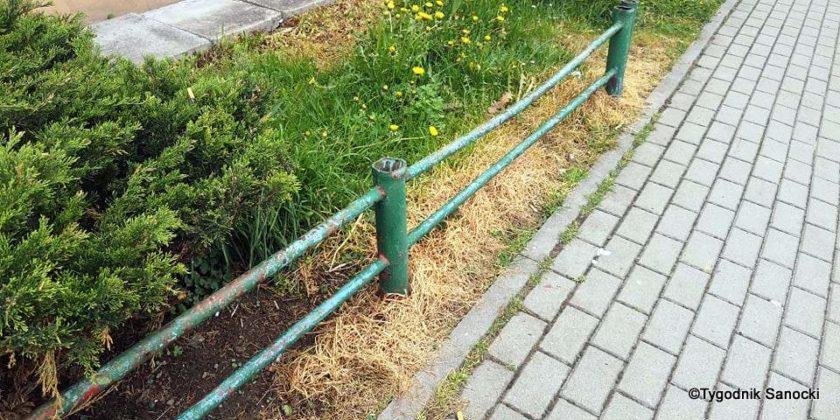 Trawniki pod blokami wypalane Roundupem 18 840x420 - Trawniki pod blokami wypalane Roundupem?