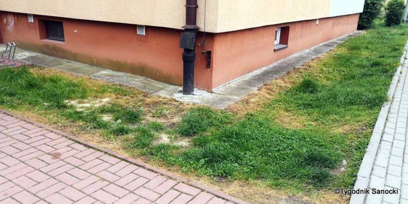 Trawniki pod blokami wypalane Roundupem 28 840x420 - Trawniki pod blokami wypalane Roundupem?