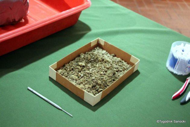 skarb 1 630x420 - Skarb sprzed 3000 lat, znaleziony pod Sanokiem