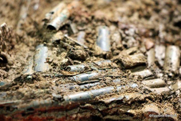 skarb 18 630x420 - Skarb sprzed 3000 lat, znaleziony pod Sanokiem