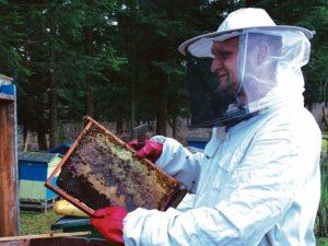 Jestem z nich dumny 300x225 - Pszczoły - etatowi pracownicy ekosystemu