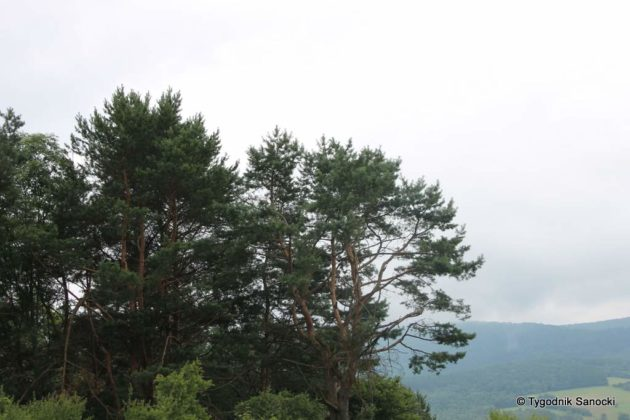 pttk beskid niski 32 630x420 - Burzliwa historia Beskidu Niskiego