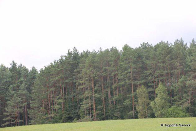 pttk beskid niski 73 630x420 - Burzliwa historia Beskidu Niskiego
