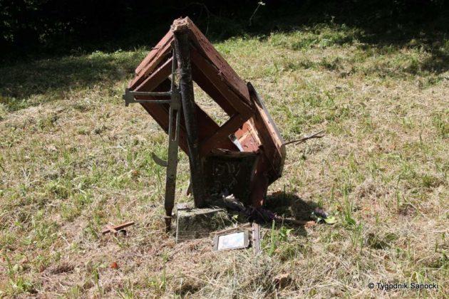pttk płonna 12 630x420 - W poszukiwaniu biedronki
