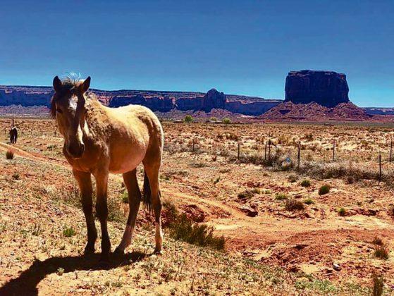 Monument Valley ziemie plemienia Navajo 559x420 - Jagoda Kubalski. Umieraj zewspomnieniami, aniemarzeniami