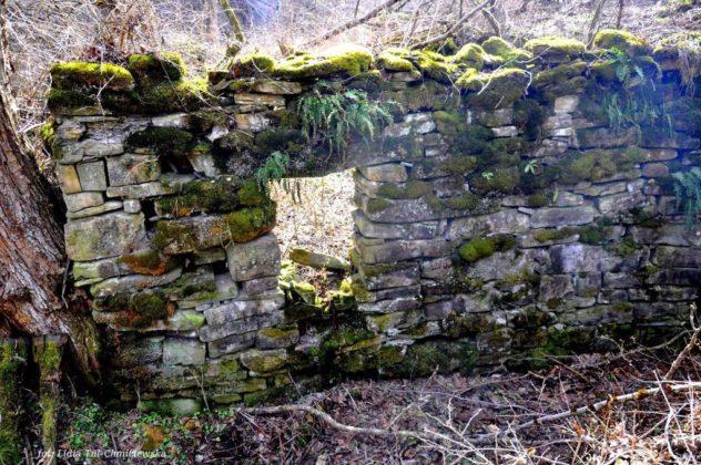Opuszczone wsie wBieszczadach 16 632x420 - Opuszczone wsie wBieszczadach