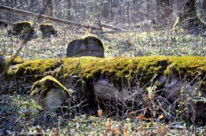 Opuszczone wsie w Bieszczadach 9 300x199 - Opuszczone wsie w Bieszczadach