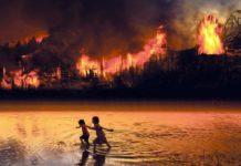 Amazonia w ogniu