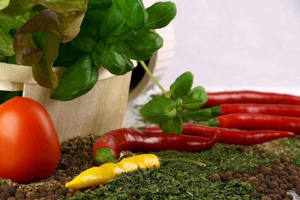 tomato 3093189 960 720 001 - Sanocka dieta