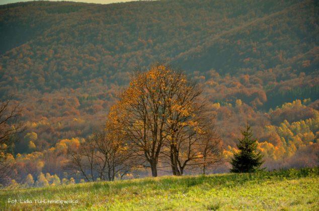 Jesieńw Bieszczadach 634x420 - Jesień w Bieszczadach - fotogaleria