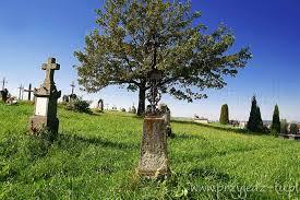 Trepcza cmentarz - LEKCJA HISTORII MAŁEJ OJCZYZNY. ZADUSZKI SZKOLNE