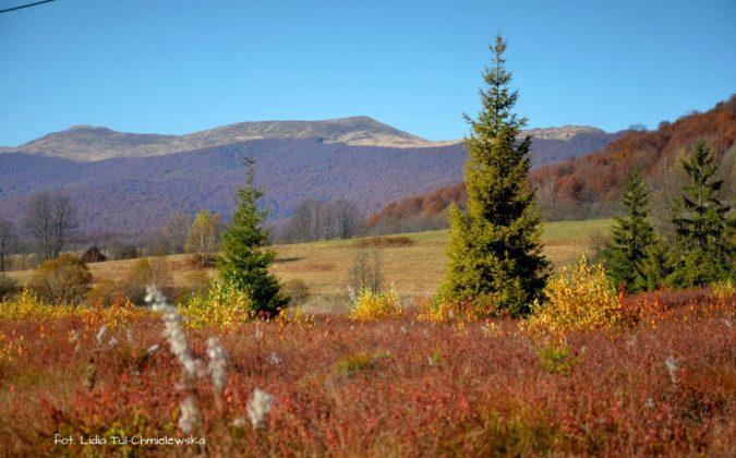 bieszczadzki kolorowy przekładaniec 675x420 - Jesień w Bieszczadach - fotogaleria