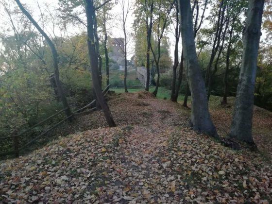 dwór 11 560x420 - Nadleśnictwo Brzesko – Leśnictwo Melsztyn – Zakliczyn. Amelia zaprasza na wycieczkę