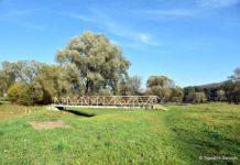 Planowany remont kładki nad potokiem Płowieckim