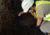 Mur obronny i szczątki ludzkie. Najświeższe wykopaliska archeologiczne w Sanoku