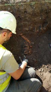 archeologia 3 169x300 - Mur obronny i szczątki ludzkie. Najświeższe wykopaliska archeologiczne w Sanoku
