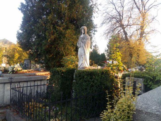 cmentarz 2 560x420 - Spacer postarych cmentarzach wSanoku