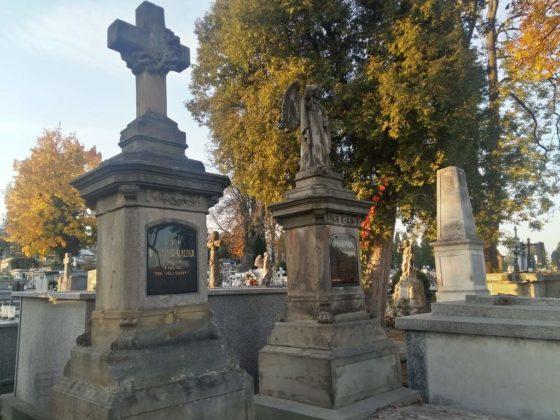 cmentarz3 560x420 - Spacer postarych cmentarzach wSanoku