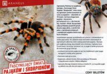 """Wystawa """"Fascynujący świat pająków iskorpionów"""" wSanoku"""