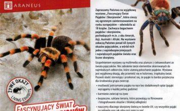 """Wystawa """"Fascynujący świat pająków i skorpionów"""" w Sanoku"""
