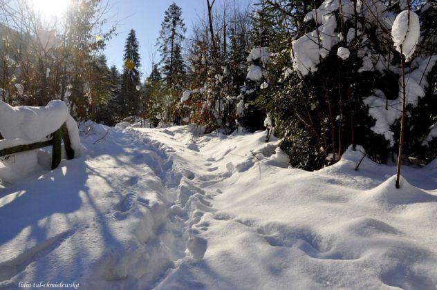Zima w Bieszczadach 12 632x420 - Zima w Bieszczadach